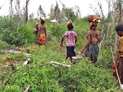 Les Mikea de Madagascar