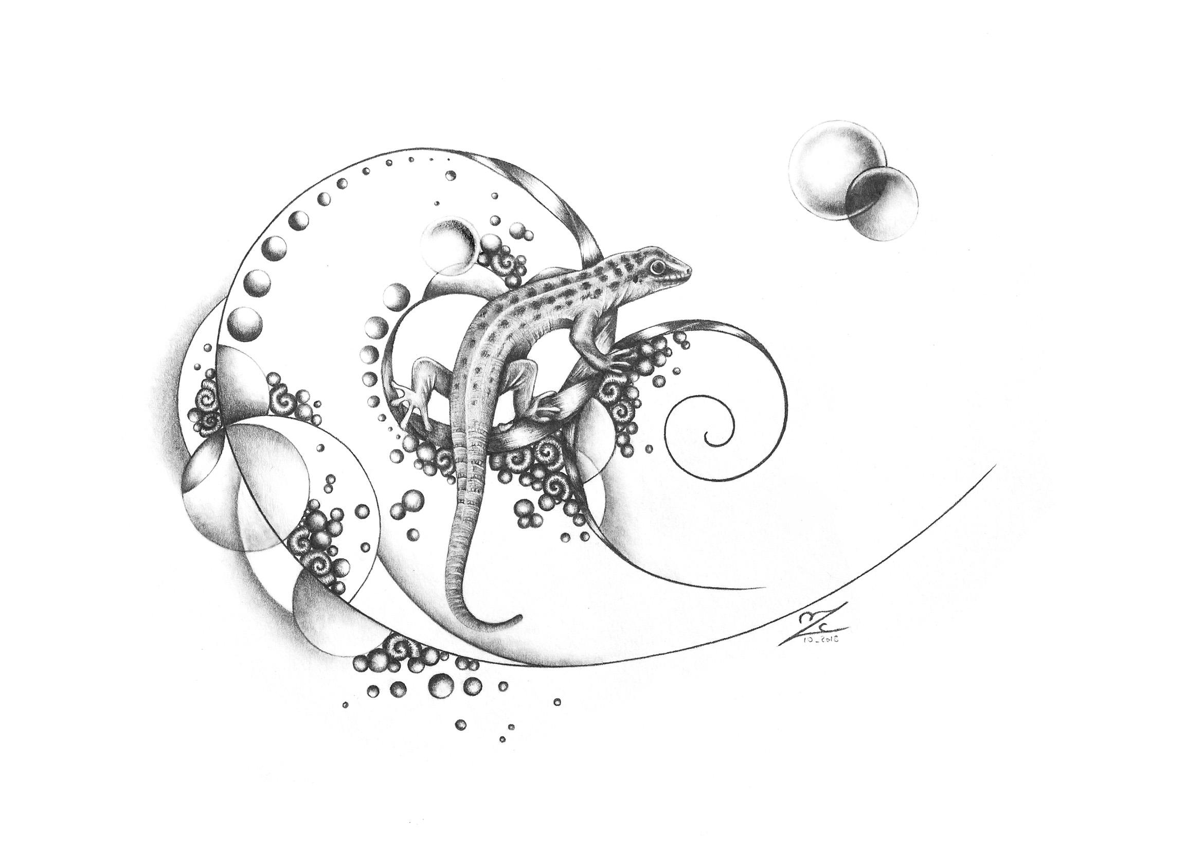 Garden Soul - Phelsuma cepediana